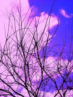 ... ποίηση είναι κάθε αιτία που οδηγεί οτιδήποτε στην ύπαρξη από την ανυπαρξία ... ποίηση είναι η γλώσσα όχι της αλήθειας αλλά της δημιουργίας ... το σύμπαν είναι ένα ποίημα που διαρκώς γράφεται ...