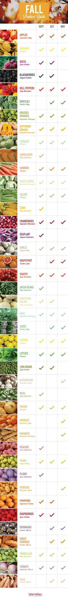 produce guide: what's in season in September, October and November #plantbased #diet