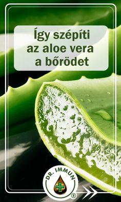 Aloe Vera, Health, Food, Health Care, Essen, Meals, Yemek, Eten, Salud