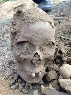Siberia: 'We dug up a medieval Mongolian noblewoman in our compost pit'