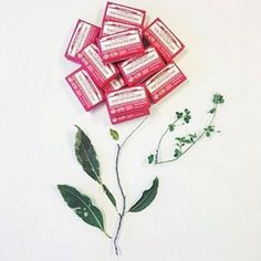 Pain de savon à la rose Dr Bronner's