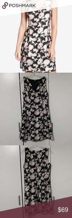 "NWT Tommy Hilfiger Floral Dress Size 4 New w/ tags, Tommy Hilfiger floral pattern dress. Size 4. Measures 16.5"" armpit to armpit, 28"" waist, 34"" from the top of the collar in the back to the bottom of the dress. Fabric: 73% Rayon, 16% nylon, 11% polyester. Lining fabric: 100% polyester. Tommy Hilfiger Dresses Mini"