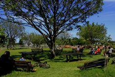 Estado possui diversas trilhas nos parques da capital, interior e litoral | Governo do Estado de São Paulo