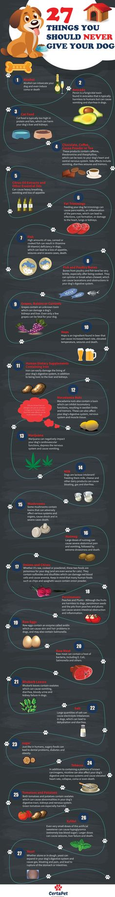 27 Toxic Foods for Dogs Infographic  Very useful with the exception of not feeding a dog raw meat. Totally believe in feeding a dog a raw diet.