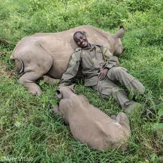 Park Ranger Kamara with two of the baby rhinos he looks after at Lewa Wildlife Conservancy by Ami Vitale. Rare Animals, Animals And Pets, Funny Animals, Nature Is Speaking, Rhino Art, Save The Rhino, Baby Rhino, All Gods Creatures, Animals Of The World