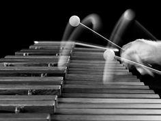 Musical Instruments - brucelehman's Photos