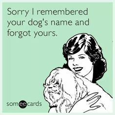 The best Pets Memes and Ecards. See our huge collection of Pets Memes and Quotes, and share them with your friends and family. I Love Dogs, Puppy Love, Funny Dogs, Funny Animals, Tech Humor, Job Humor, Crazy Dog Lady, Dog Rules, Pet Grooming