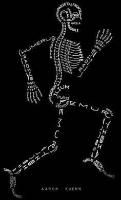 Skeleton Typogram, A Human Skeleton Illustration Made Using The Words For Each Bone http://pin.it/qncoG6m