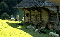 24 Vernacular Architecture, Old Houses, Countryside, Trips, House Design, Homes, Dreams, Traditional, Natural