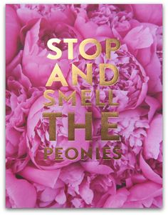 'Stop And Smell The Peonies' - Stephanie Sterjovski Original Print + AnnaWithLove Photography | SS Print Shop