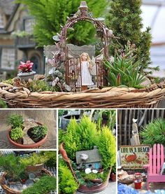 Miniature fairy garden ideas.