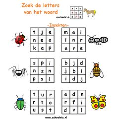 Verborgen woord: Insecten. #puzzels #taal #woorden #insecten #schoolwiz
