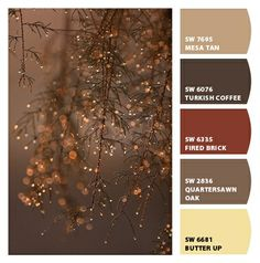 Paint colors from Chip It! by Sherwin-Williams - love this color palette.