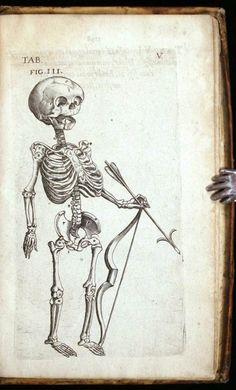 Theaturm Anatomicum, Caspar Bauhin, 1605