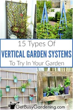 Vertical gardening systems allow you to grow plants like vegetables herbs and fl Vertical Garden Systems, Vertical Gardens, Planting Vegetables, Growing Vegetables, Metal Garden Fencing, Stacked Pots, Diy Projects On A Budget, Types Of Herbs, Design Jardin