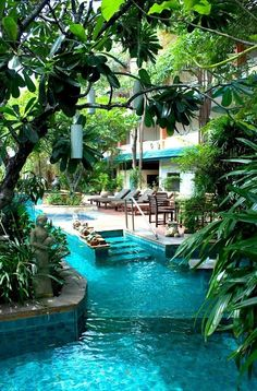 Jungle plants around the pool.
