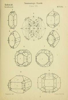 v. 5-7 1881-83 - Természetrajzi Füzetek kiadja a Magyar nemzeti Muzeum. - Biodiversity Heritage Library