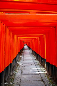 The tunnel of red torii at Fushimi Inari Shrine in Kyoto.