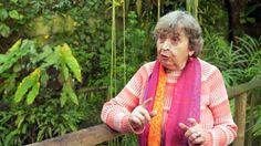Kouzelné bylinky Stvořené pro ženy