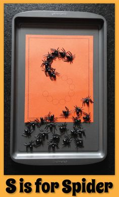 S is for spiders.  Magnetic spiders and Lots of Dots letter worksheets on a cookie sheet.