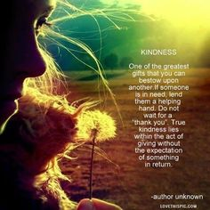 kindness life quotes quotes positive quotes photography quote girl life positive wise advice dandelion wisdom life lessons positive quote