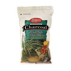 Terrain Horticultural Charcoal  #shopterrain