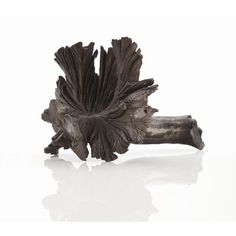 ARTERIORS Home Latham Root Sculpture | AllModern