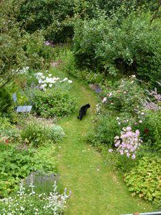 Garden Drawing kat p tur Small Space Gardening, Garden Cottage, Plantation, Back Gardens, Dream Garden, Garden Planning, Garden Inspiration, Garden Plants, Garden Pond