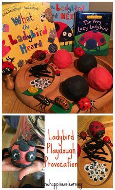 ladybird+provocation.jpg 967×1,600 pixels