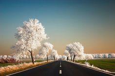 17 fotó amely bebizonyítja, hogy a természetnek saját Photoshopja van | latnodkell