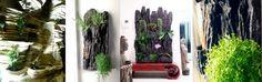 jardines verticales Javaneses