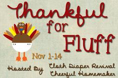 The Cloth Diaper Revival: Thankful for Fluff Giveaway Hop!