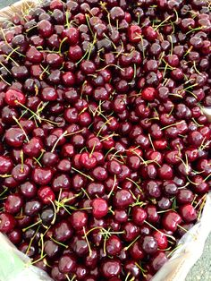 Bing Cherry time! Forest Grove, Or. Farmers Mkt.