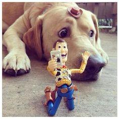 Woody...to cute❤️