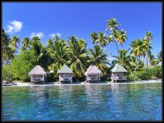Remote beach condos on the southerly tip of Fakarava Beach Condo, French Polynesia, Condos, Remote, Surfing, Bucket, Tours, Mansions, House Styles