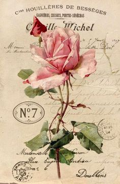 Vintage rose sepia Digital collage Free for personal use.Charming Art by Vastí Fernandes: More pictures for decoupagem and scrap decor.Pink rose on ad with postmarks.This Pin was discovered by Dana Batho @ Peacock & Fig Cross Stitch…Vintage Shabby Chic Decoupage Vintage, Vintage Diy, Vintage Rosen, Images Vintage, Vintage Labels, Vintage Ephemera, Vintage Pictures, Vintage Cards, Vintage Paper