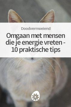 Hoe kun je omgaan met mensen die je energie vreten? Ontdek praktische tips om te voorkomen dat anderen je energie zuigen.