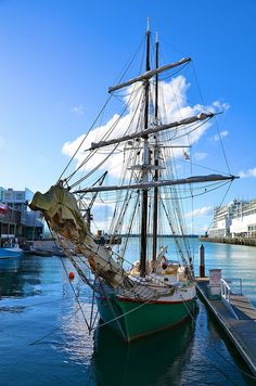 The City of Sails - Auckland, New Zealand.