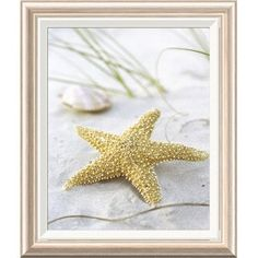 "Global Gallery 'Sandy Beach II' by Gaetano Framed Photographic Print Size: 24"" H x 20"" W x 1.5"" D"