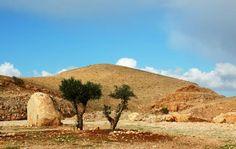 Les collines du centre : Les régions centrales - Israël