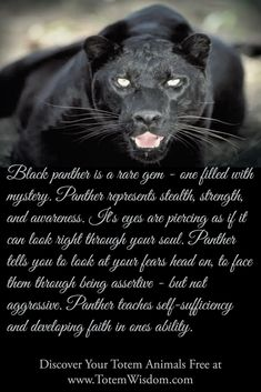 http://totemwisdom.blogspot.com/2015/02/black-panther-totem-image-and-meaning.html  Learn all about the black panther power animal, how its eyes penetrate the soul and help you develop your intuition and inner strength.