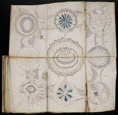 The Voynich Manuscript - a handwritten book comprising about 240 vellum pages,  most with illustrations, and thought to date from the early 15th century. Although many possible authors have been proposed, the author, script, and language remain unknown. It has been described as the world's most mysterious manuscript.