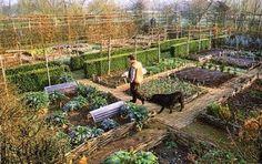 Monty Don Garden