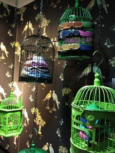 "Hackett's London,""Birds of Paradise"",close-up, pinned by Ton van der Veer"