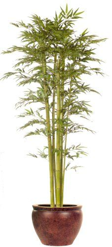 7FT BAMBOO TREE/2PC >>> For more information, visit image link.