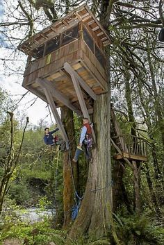 Treehouse Masters | ISSAQUAH, WASHINGTON, APRIL 23 2013: Treehouse Masters' Pete Nelson ...