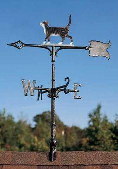 Curious Cat Weather Vane !
