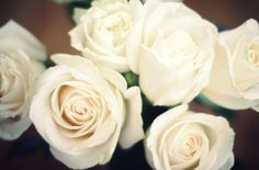 ♡White roses are always a favourite- just remember there are more than 19 varieties of white roses, most florists either use small spray roses which are the small ones or the ones you see here but if you do your research you can find a unique variety...just be prepared to pay the big bucks for them!