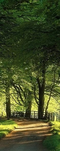 Awesome View: Pentlands near Edinburgh, Scotland • photo: Sebastian Kraus. Looks like something from Pride and Prejudice. . .