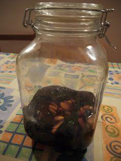 WILDCRAFT VITA: Mulberry Liqueur